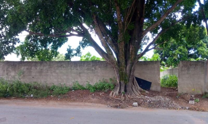 PA1035 – Lagoa da Prata/MG – Lote com a área de 330,00m² no bairro Gomes - Lance Inicial: R$100.000,00